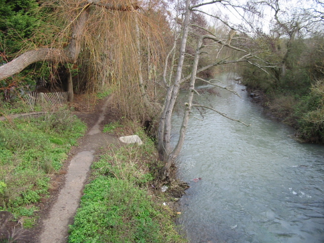 Great Stour at Kingsmead