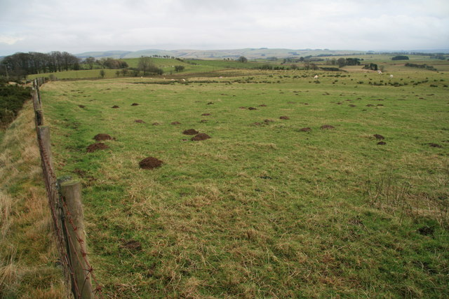Pastures beside the lane from Seven Wells to Bryn Dadlau