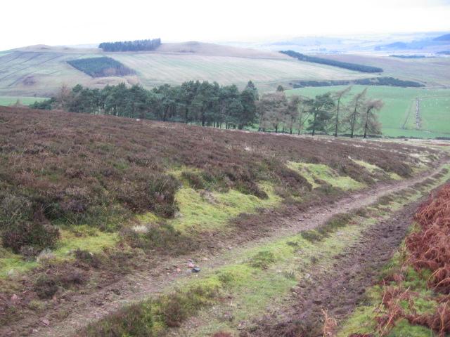 Track below Scaut Hill