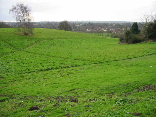 A green area near Canterbury city centre