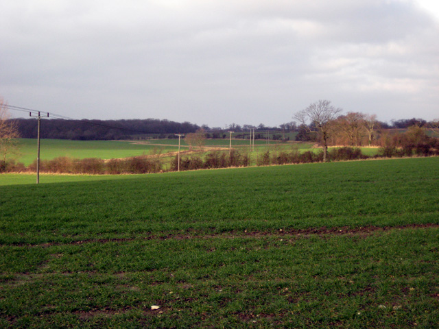 Fieldscape behind Kelsale Lodge