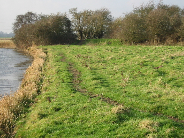 The Goshall Stream and remnants of disused railway