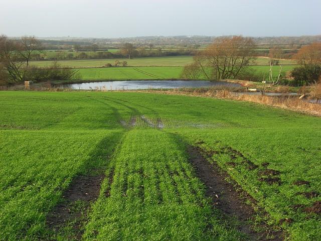 Farmland and ponds, Ashbury