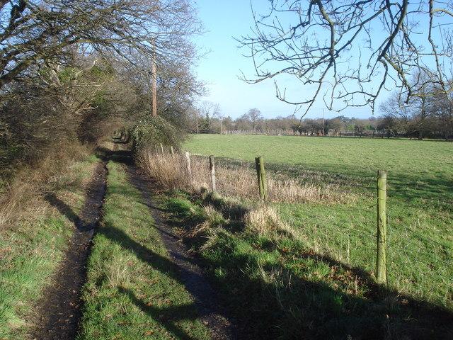 Track near the Three Counties Showground