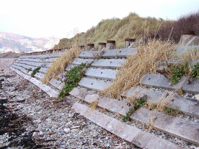 Wooden sea defence