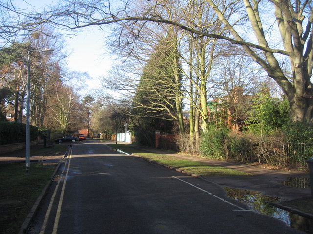 View down Chaucer Road