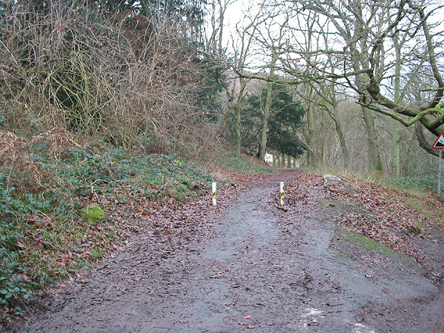 Minor road to Gullet Quarry