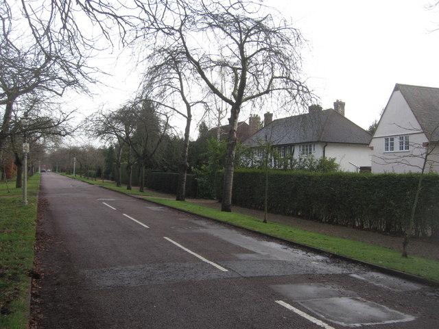 View down Barrow Road