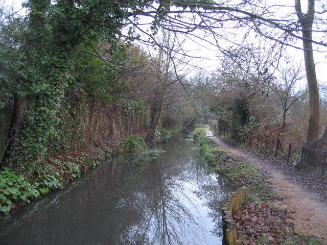 Footpath along Hobsons Brook