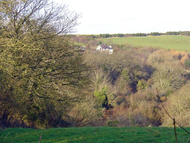 Ysgubor-wen Farm
