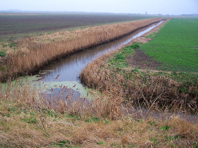 The North Stream from Rushbourne Sea Wall
