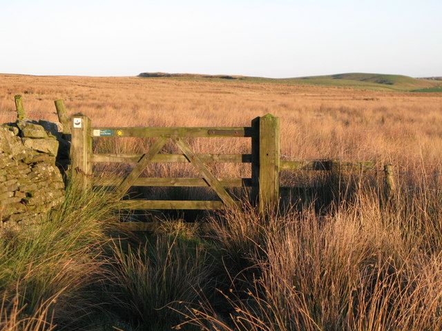 Footpath to the moor