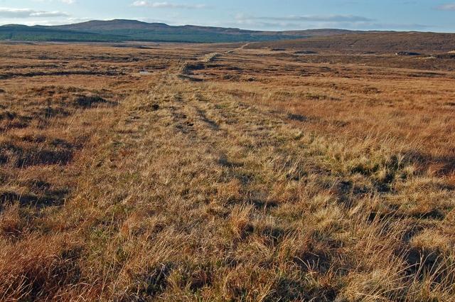 Grassy track above Glen Bernisdale