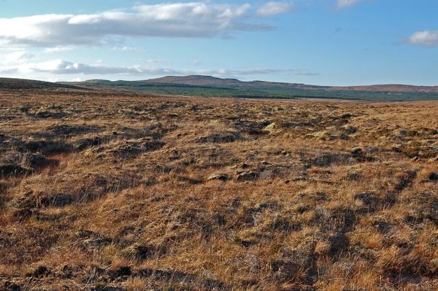 Moorland south west of Loch Niarsco