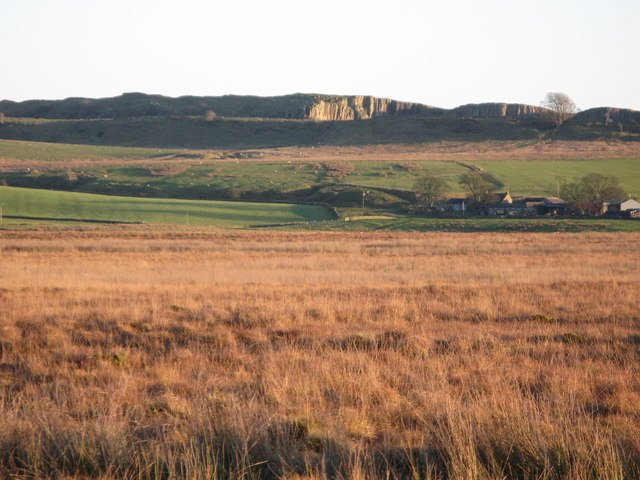 Thirlwall Common (2)