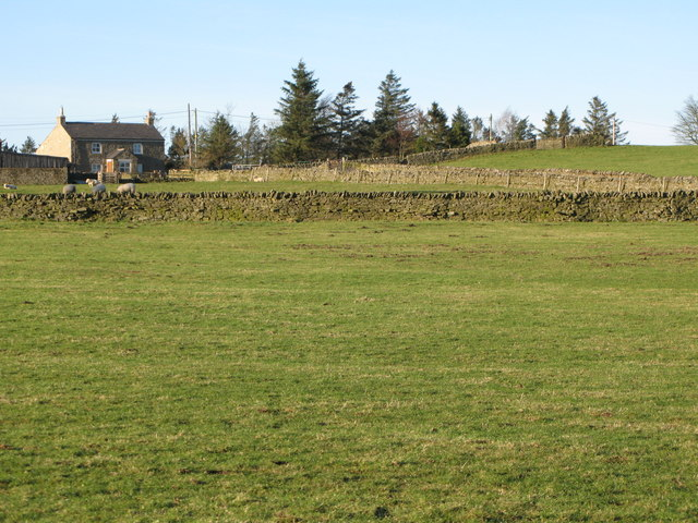 Pastures near Old Town (2)
