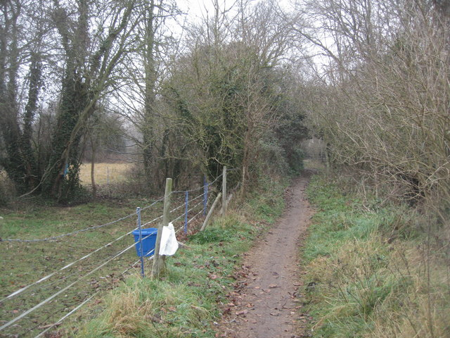 Footpath along Hobsons Brook