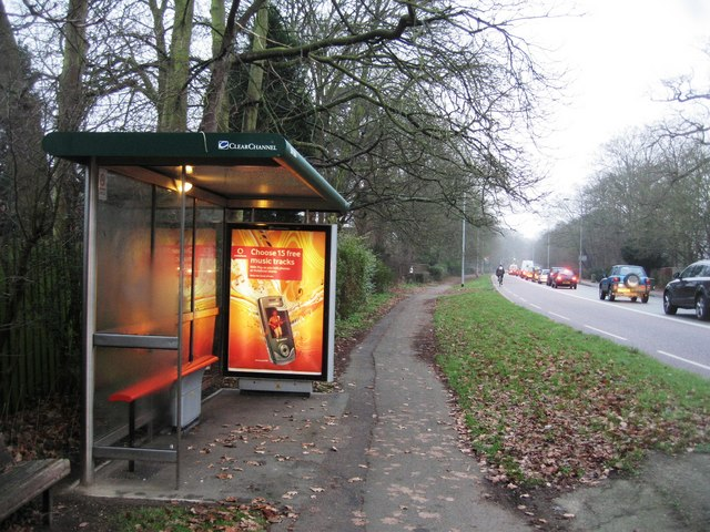 Bus Stop on Trumpington Road