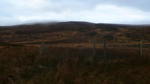 'Midden' on moorland below hillside