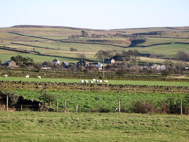 Towards Catton