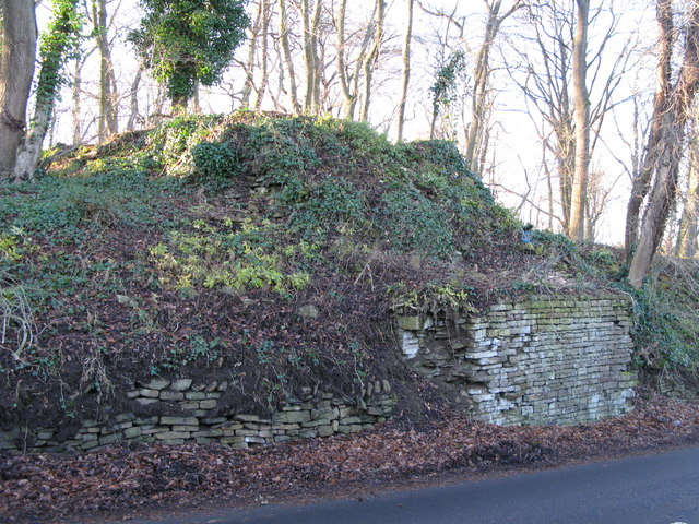 Remains of bridge carrying the old lead smelting flue over the B6295