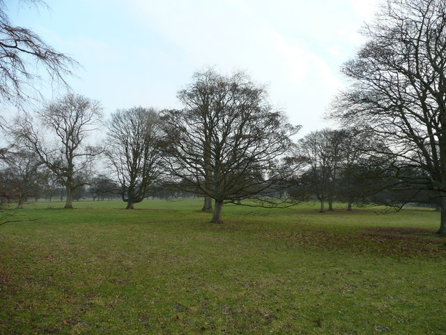 Parkland at Tedsmore Hall