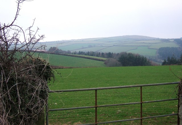 Trengale Wood and the Fowey valley