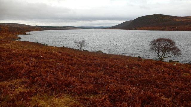 Loch Naver shoreline