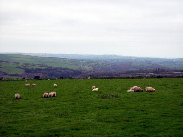 View west from Mynydd Melyn