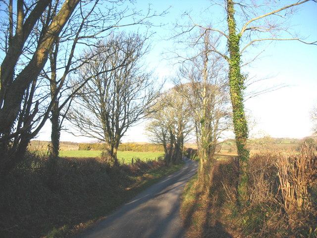 Country road north of Gellidara