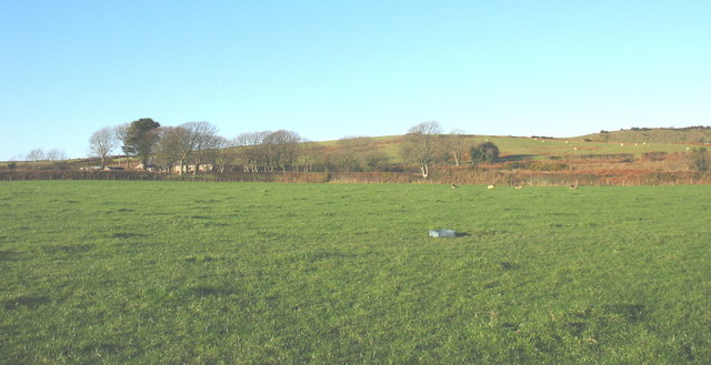 View across improved pasture towards Tan-y-bryn Farm