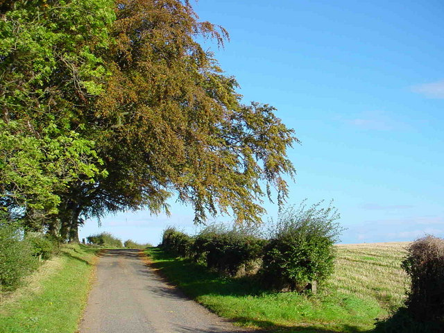 Lane near Longnewton