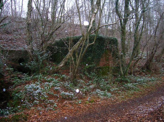 Pillbox A115, Old Lodge Warren