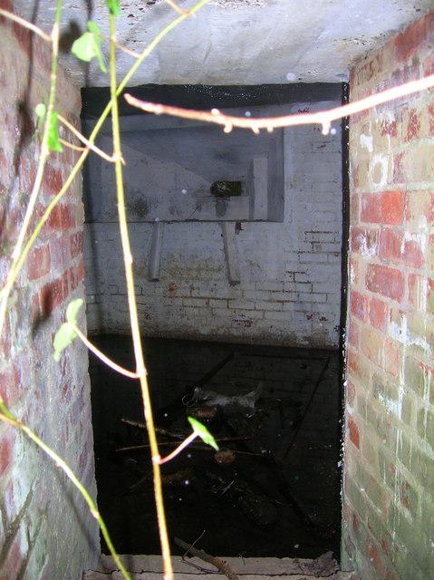 Inside Pillbox A115, Old Lodge Warren