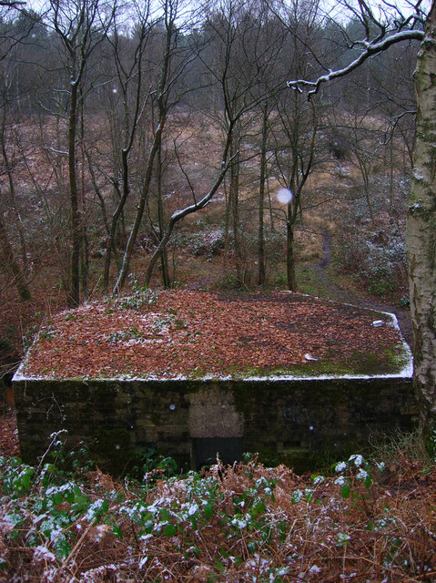 Pillbox A110, Old Lodge Warren