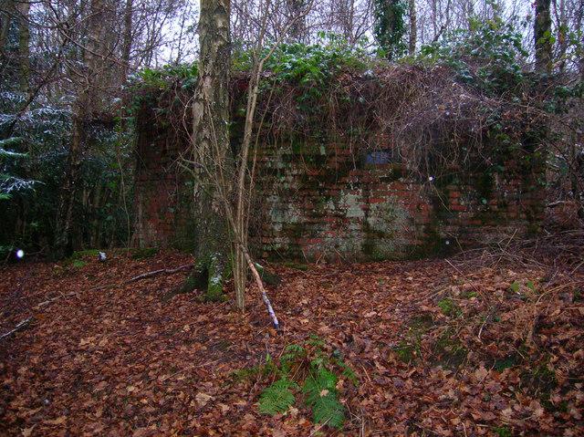 Pillbox A109, Old Lodge Warren