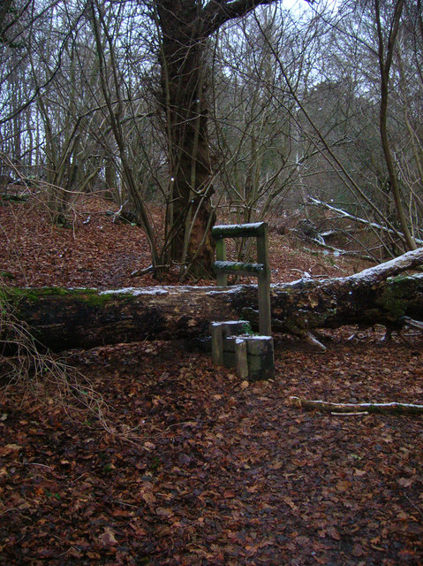 Stile over Fallen Tree, Old Lodge Warren