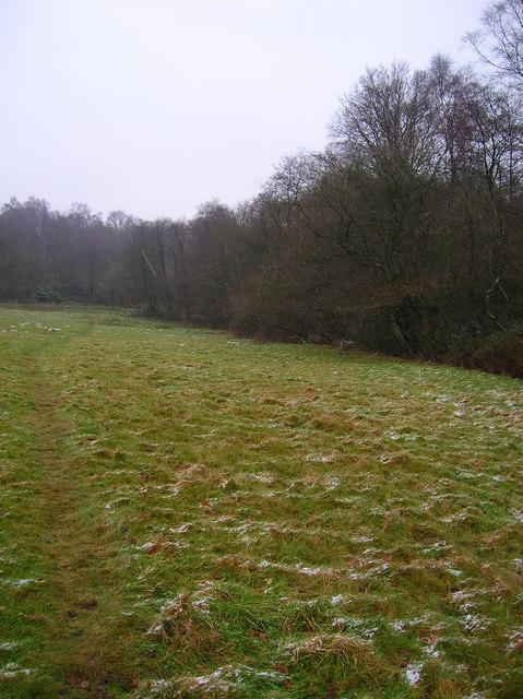 Former Anti-Tank Ditch, Old Lodge Warren