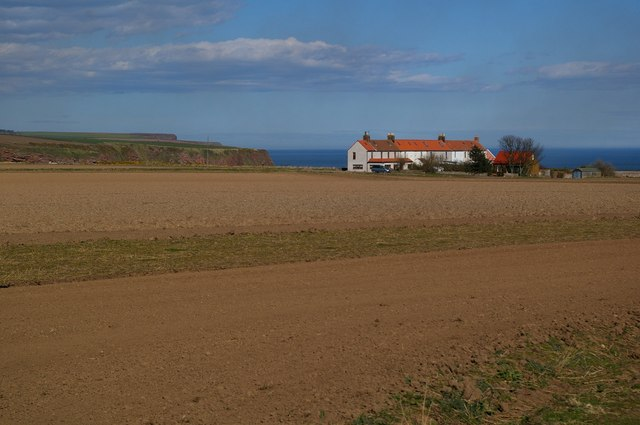 Houses on the Coast at Auchmithie