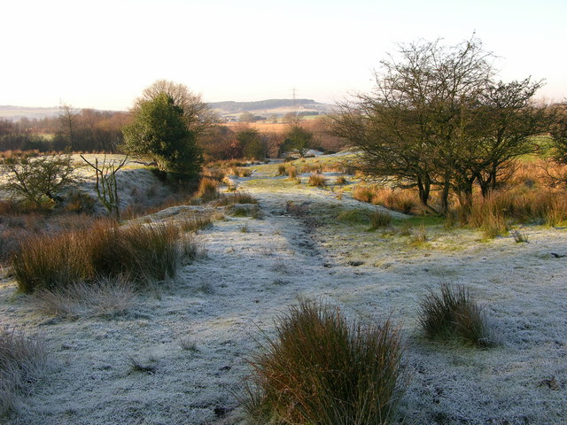 Frosty Morning near Simons Lodge