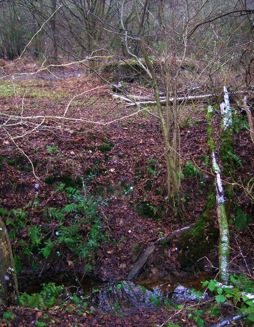 Pillbox A107, Hornshurst Wood