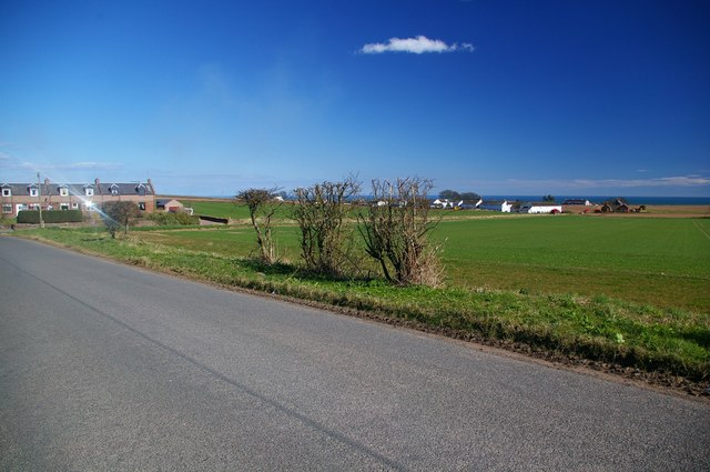 Houses Near Auchmithie