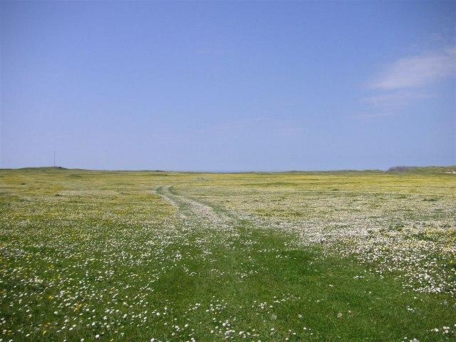 Track across the machair, Barra