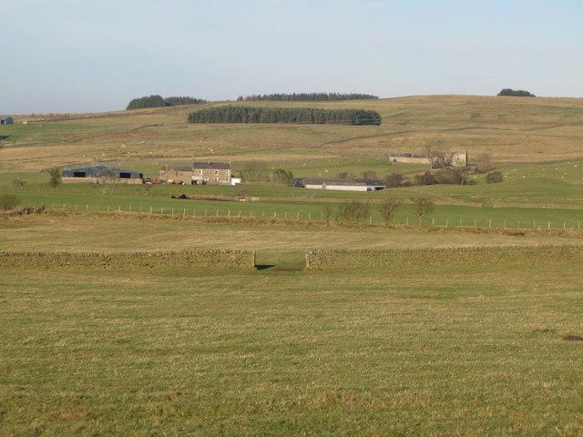 Pastures above Shieldburn Hall