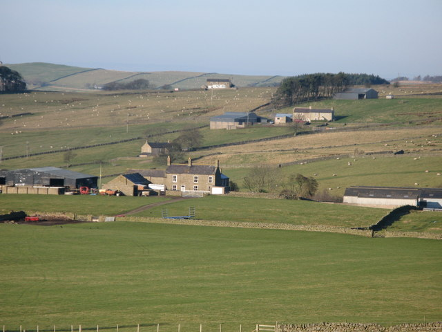 Farms above Allendale Town