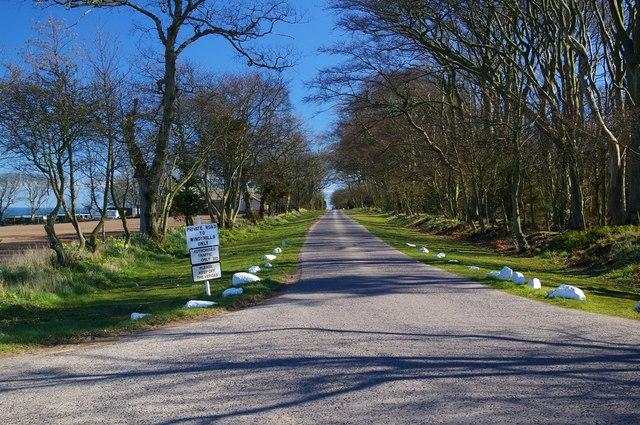 Driveway to Windyhills, Auchmithie