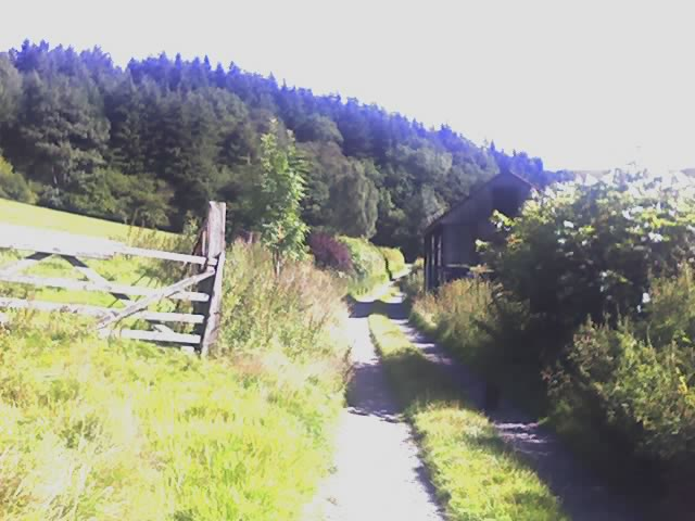 View down Eirianallt farm track