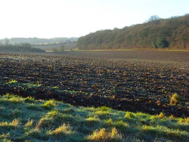 Farmland, Stype