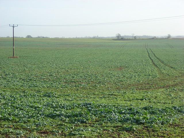 Farmland, Kiln Green