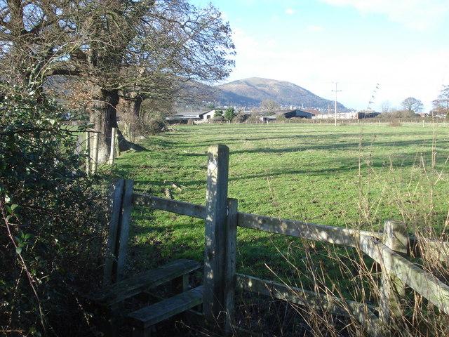 Footpath near Blackmore Park Farm